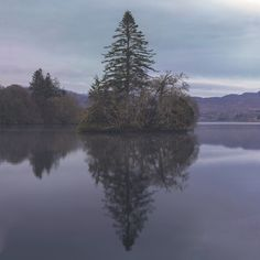 Tree in the middle of a still lake in Ireland [OC] [9459x9459]   landscape Nature Photos
