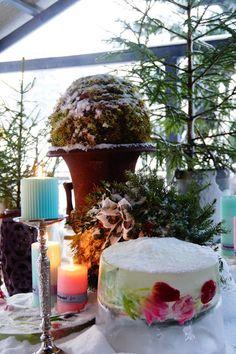 Ripaus unelmaa Puttipajalta: Talvipuutarhan kaunistajat ja sydän ystävälle
