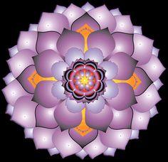 Provérbios e Frases: O significado da Mandala