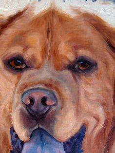 Starbuck custom Pet Portrait Oil Painting by by puciPetPortraits, $617.00