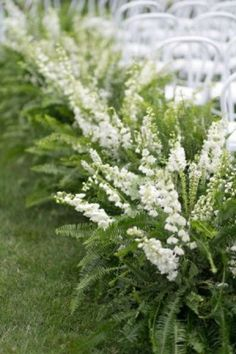 green fern wedding ceremony flowers
