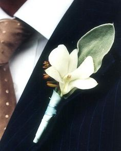 A boutonniere combines orchids and lamb's ear at an outdoor wedding in Connecticut.