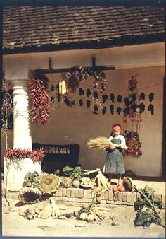 Central Europe, Folk Music, My Heritage, Porch, The Past, Old Things, Cottage, Culture, Rustic