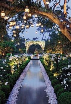Fairytale Wedding - love this ceremony aisle