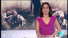 La 2 Noticias: Igualdad Animal cumple 10 años defendiendo a los animales on Vimeo