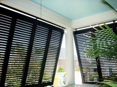 Bahama Bermuda Shutters - best shutter ever authentic exterior shutters by Palmetto window fashions Bermuda Shutters, Bahama Shutters, Louvre Windows, Interior Design Degree, Interior Window Shutters, Outdoor Shutters, House Blinds, Patio Blinds, Bamboo Blinds