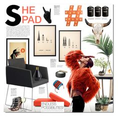 """""""shePAD"""" by justlovedesign ❤ liked on Polyvore featuring interior, interiors, interior design, home, home decor, interior decorating, me&him&you, NDI, Typhoon and Ethimo"""