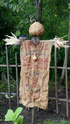 Warty gourd head scarecrow made by Amy Duncan Winchester, IL. Scarecrows For Garden, Primitive Scarecrows, Primitive Autumn, Fall Scarecrows, Primitive Decor, Autumn Decorating, Fall Decor, Art Vert, Fall Projects