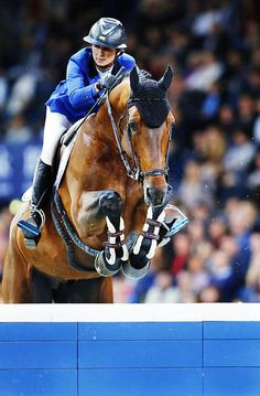 Vagabond de la Pomme - Penelope Leprevost (France) Bay Stallion (11/05/2005) - SBS (Belgian Sport Horse) Sauterelle de la Pomme STX (For Pleasure) x Vigo d'Arsouilles STX