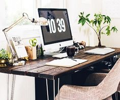 Read on for five plants you couldn't kill if you tried. I would also like that desk.