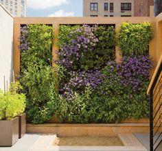 jardines para casas pequeas sencillos buscar con google