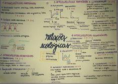#relaçõesecológicas #resumo #biologia