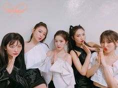 Find images and videos about red velvet, joy and irene on We Heart It - the app to get lost in what you love. Seulgi, Kpop Girl Groups, Korean Girl Groups, Kpop Girls, K Pop, Cool Girl, My Girl, Nct, Velvet Wallpaper