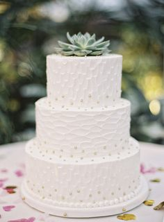 Elegant, chic and simple winter wedding cake idea -three-tiered wedding cake with textured frosting, gold sugar beads and succulent cake topper {Jordan Brian Photography}