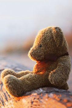 Dit is Maarten de knuffelbeer van Jantje, het is zijn enigste vriend dat hij heeft in zijn kast.
