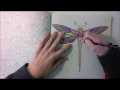 Enchanted Forest - Johanna Basford; Dragonfly - YouTube