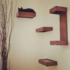 Hey, I found this really awesome Etsy listing at https://www.etsy.com/listing/191228299/cat-wall-shelves