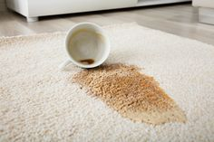 Do you know how to get Coffee Stains out of a Carpet? Removing coffee stains from carpet is a difficult job. But with these 6 tips, you can easily make them disappear without much effort. Cream Carpet, White Carpet, Wool Carpet, Wine Stains, Tea Stains, Best Carpet Stain Remover, Stain Removers, Cleaning Carpet Stains, Coffee Stain Removal