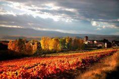 Arenzana de Arriba. La Rioja https://www.facebook.com/ExclusivasImanara/photos/pb.589775087728997.-2207520000.1443539880./837089332997570/?type=3