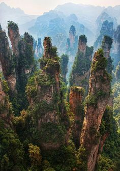 Rock Spires in Zhangjiajie, Hunan, China #chinatravel