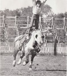 Horses trained for trick riding must have great sensitivity to the rider and his signals.
