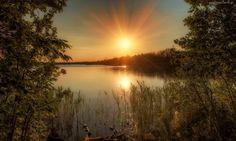 Jezioro, Zachód, Słońca, Drzewa, Trawy