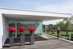 DIVISION planting columns by fleur ami ▪ Pflanzsäulen von fleur ami Division, Planters, Sidewalk, Columns, Home Decor, Flowers, Plants, Nature, Garten