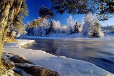Winter beauty of nature Beautiful Pictures Beautiful World, Beautiful Places, Beautiful Pictures, Beautiful Scenery, Amazing Places, Natural Scenery, You're Beautiful, Wonderful Places, Wonderful Time