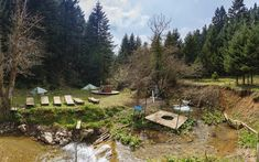 Leisure park in Pavliani village, Fthiotida Prefecture, central Greece Greek Flowers, Forest Mountain, Tree Forest, Flowering Trees, Forests, Stepping Stones, Greece, Mountains, Landscape