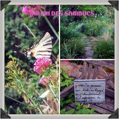 jardin des sambucs