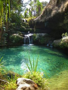 Before i die id like to swim under a waterfall. Waterfalls to me are beautiful and it just sounds so fun to swim under one.