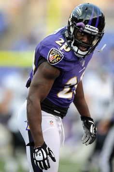 Ed Reed // Baltimore Ravens