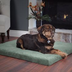 Trademark PAW Forest Orthopedic Pallet Pet Bed ( 27 x 36 x 3.5)