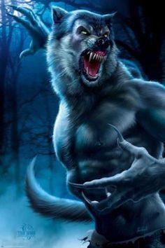Artwork: werewolf by fantasy artist Tom Wood. See more artwork by this featured artist on the fantasy gallery website. Dark Fantasy, Fantasy Art, Beasts Of England, Man Beast, Werewolf Art, Werewolf Teeth, Vampires And Werewolves, Creatures Of The Night, Horror Art