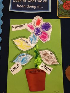 This activity lasted a number of sessions. Then they added the leaves to talk about what a flower needs to grow and lastly they labelled the flower Continuous Provision Eyfs, Nursery Activities, Traditional Tales, Jack And The Beanstalk, Growing Gardens, Recycled Garden, Plant Science, Holiday Themes, Too Cool For School