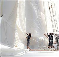 Photo Plisson - La première agence photo de la planète mer