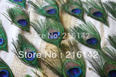 FREE SHIPPING-100pcs/lot Prefect Trimmed Peacock feather for scrapbooking,invitations,weddings,fasteners(China (Mainland))