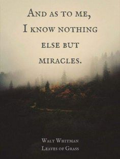 """""""And as to me, I know nothing else but miracles"""" ― Walt Whitman, Leaves of Grass Quotes Dream, Quotes To Live By, Me Quotes, Motivational Quotes, Inspirational Quotes, Career Quotes, Wisdom Quotes, Success Quotes, Robert Kiyosaki"""