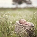 Newborns » Blue Dandelion Photography