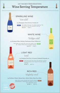 Wine Serving Survival Guide