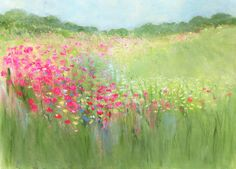 "Sue Fenlon, ""Field Poppies"""