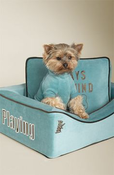 Juicy Couture Velour Dog Bed | Nordstrom #juicy #doggycouture