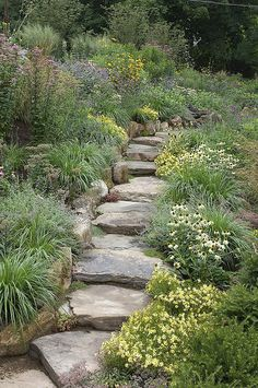 Shanti Garden, Butterfly Garden | Flickr - Photo Sharing! such a pretty set of steps