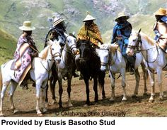 Basotho riders, (riding Basotho Ponies, a particular breed suited to the mountainous terrain of the Maluti Mountains surrounding this sovereign kingdom), dressed in their traditional wool blankets and conical grass hats. African Culture, African Art, Rare Horse Breeds, Rare Horses, Horse Facts, Thoroughbred Horse, Out Of Africa, People Of The World, Beautiful Horses