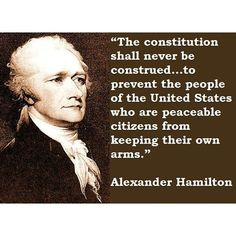 Alexander Hamilton Quotes Interesting Alexander Hamilton Quote  The Spirit Of Enterprise  The Federalist