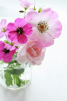ღ♥ღ♡ flores ♡ ღ♥ღ