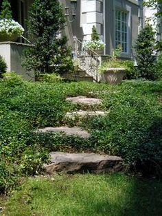 Garden Steps That Complement | LandscapeAdvisor