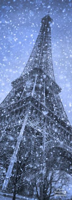 Eiffel Tower | Paris