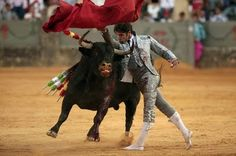 Cayetano Rivera Ordoñes  the face of Armani bullfighting wearing a suit made for him by Armani himself.