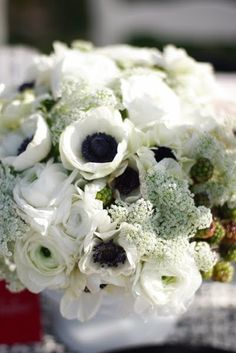 black & white flowers - anenome, queen anne's lace and ranunculus White Anemone, Anemone Flower, White Ranunculus, Floral Wedding, Wedding Bouquets, Wedding Flowers, Elegant Wedding, Blue Wedding, Gardens